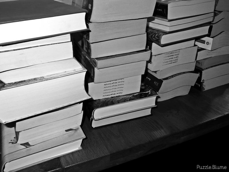 Bücher Veröffentlicht am 2013/11/25 von puzzleblume